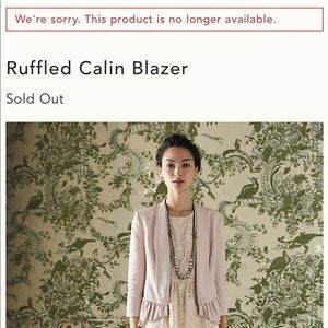 Anthropologie blazer SOLD OUT